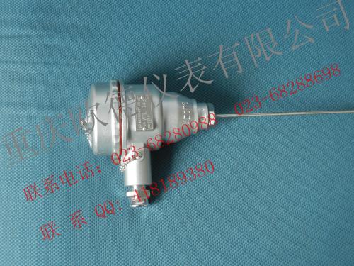 隔爆热电偶/热电阻防爆类型、等级和级组